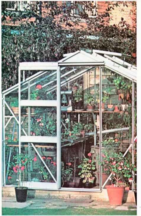 Choosing Greenhouse Structure