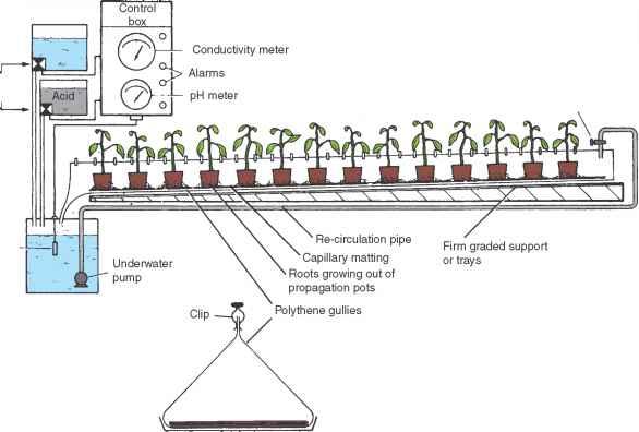 Nutrient Film Technique Nft Horticulture Guide