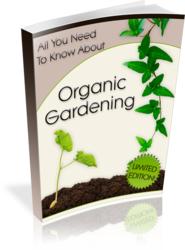 All You Need To Know About Organic Gardening