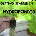 Simon's Simple Hydroponics Plans Review