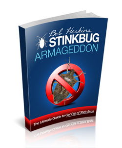 Stink Bug Control Secrets Revealed