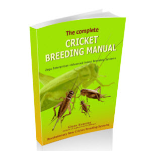 Crickets Breeding Made Simple
