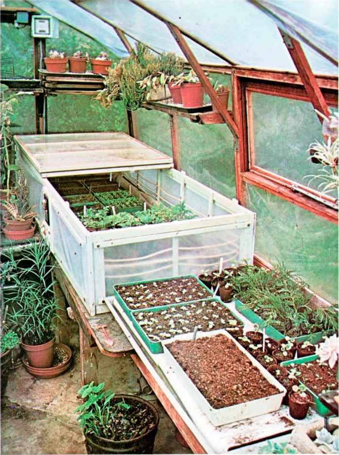 Seed Propagation Greenhouses