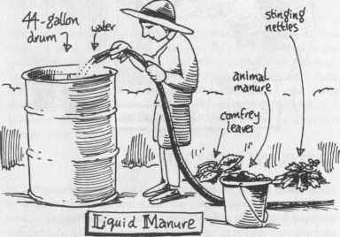How Make Liquid Manure