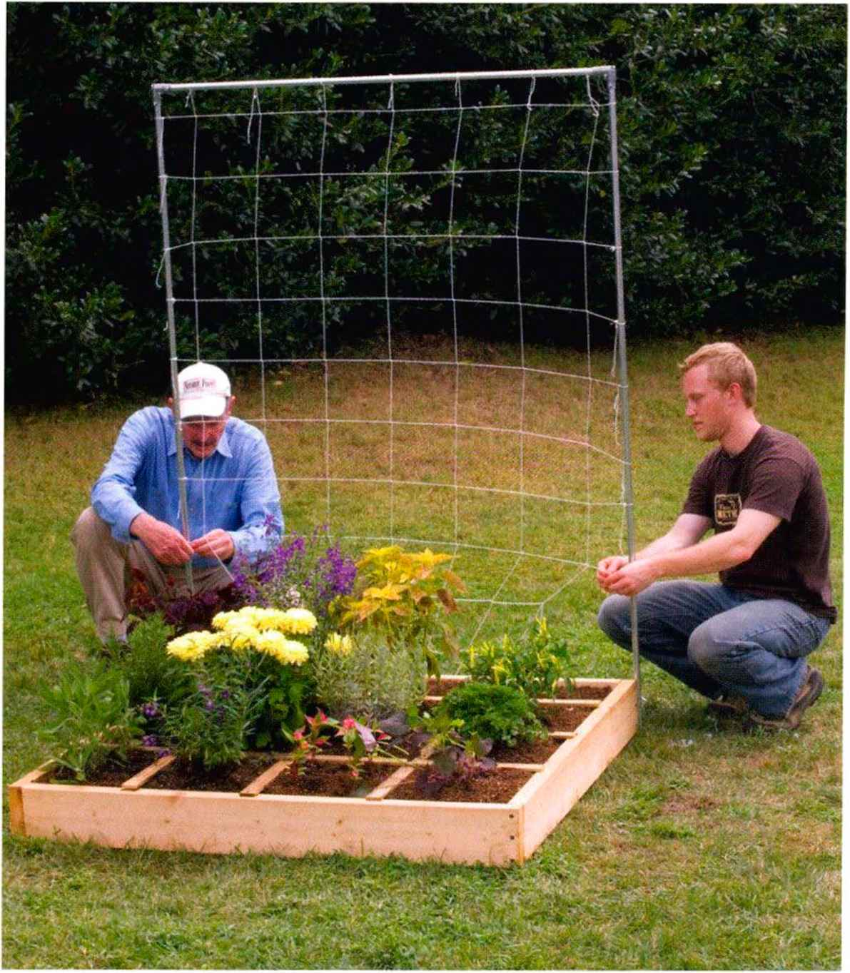 All New Sql Are Foot Gardening Square Foot Gardening